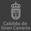 cabildo-gran-canarias